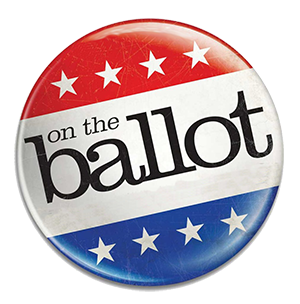 What's on the Ballot for the Nov 7 Constitutional Amendment Election
